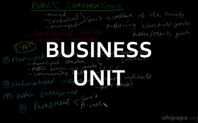 Ordinary Level Business Units