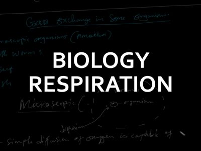 Ordinary Level Respiration-Biology